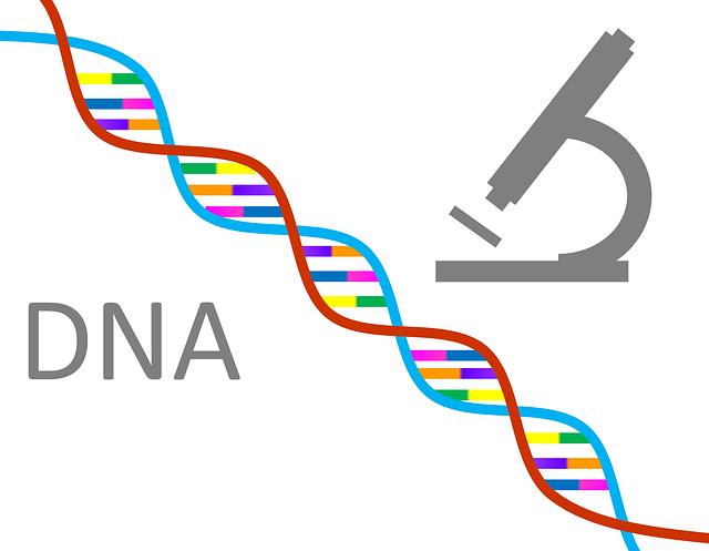 Nutrigenomic DNA Genetic Testing Provider